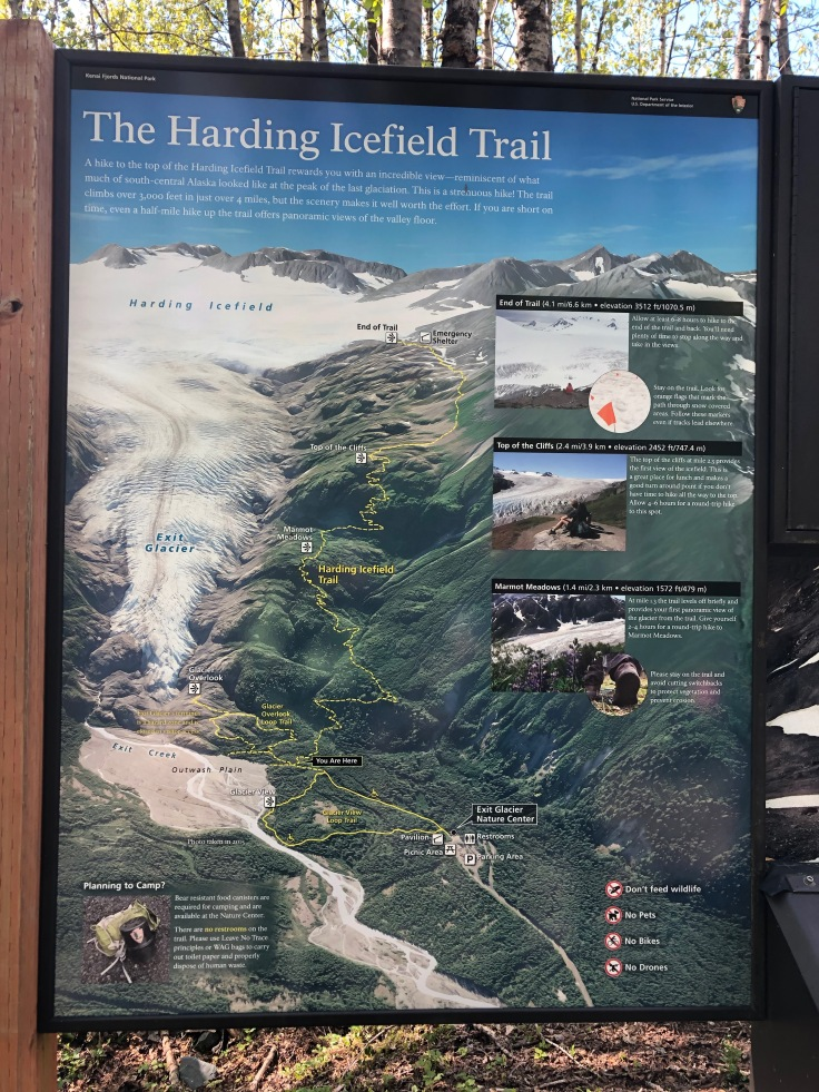 Kenai Fjords National Park Map